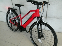 E-Trecking Bike Raleigh Bosch Performance Linie 2020